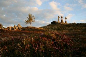 40 let Chráněné krajinné oblasti Slavkovský les