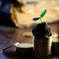Minimalismus a vaše finance