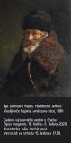 Ilja Jefimovič Repin, Podobizna Jefima Vasiljeviče Repina, umělcova otce, 1881