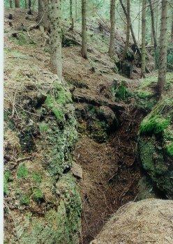 Krušnohorský a slavkovský cín, jeho minerály, ložiska a horníci