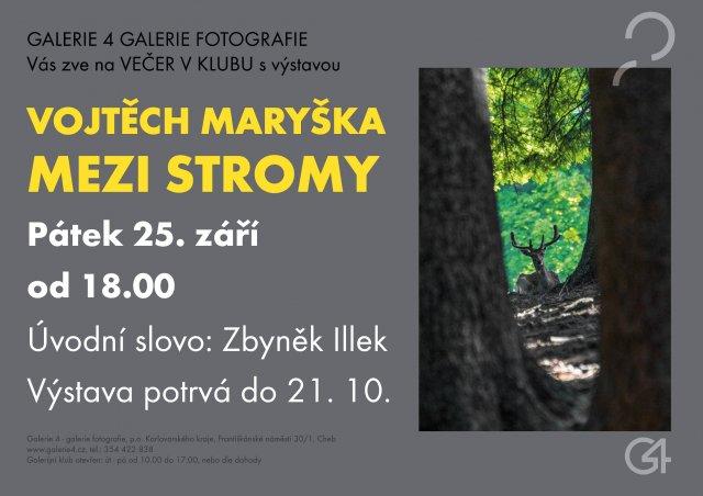 GALERIE 4 | Vojtěch Maryška - Mezi stromy